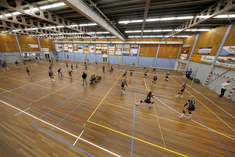 Volleybalclub Dinto, met zóveel jongeren in het bestand, koestert bevoorrechte positie van jeugd die samen mag blijven trainen: 'Tóch is het anders'