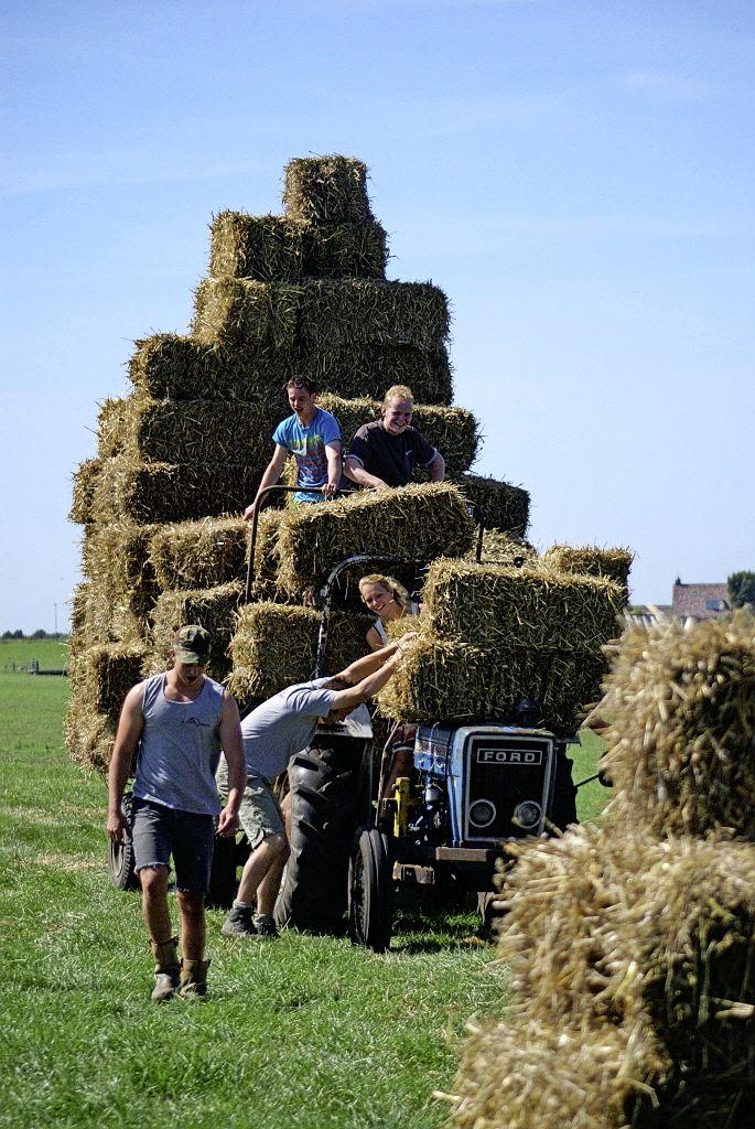 Activiteiten voor betere verbinding boer en stedeling dankzij stichting Land van Wijk en Wouden stoppen na 14 jaar: 'Het kwam als donderslag bij heldere hemel'