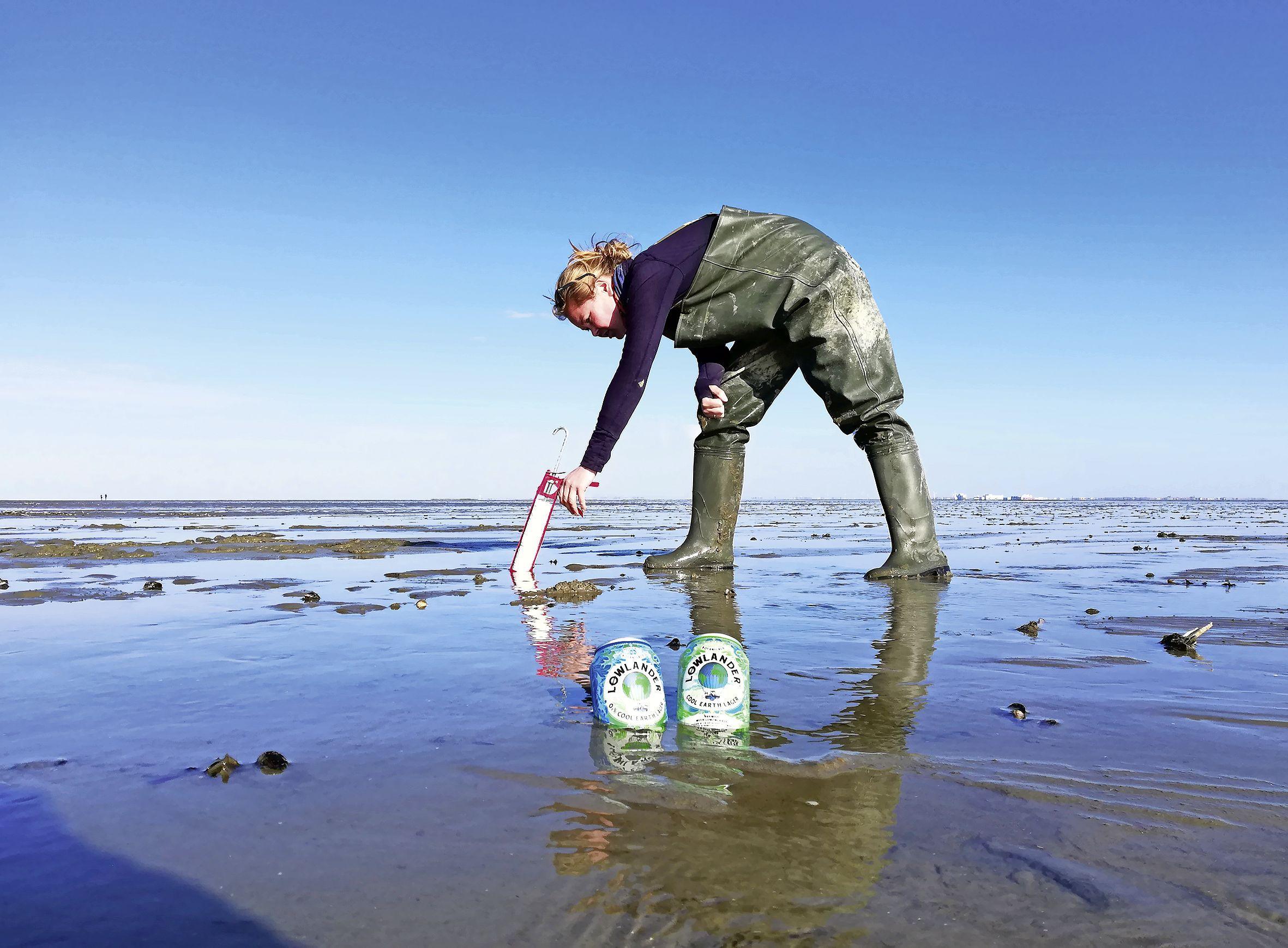 Nieuw pilsje voor planeet én smaakpapillen: Lowlander plant voor elke 'Cool earth lager' zeegrasplantje in Waddengebied