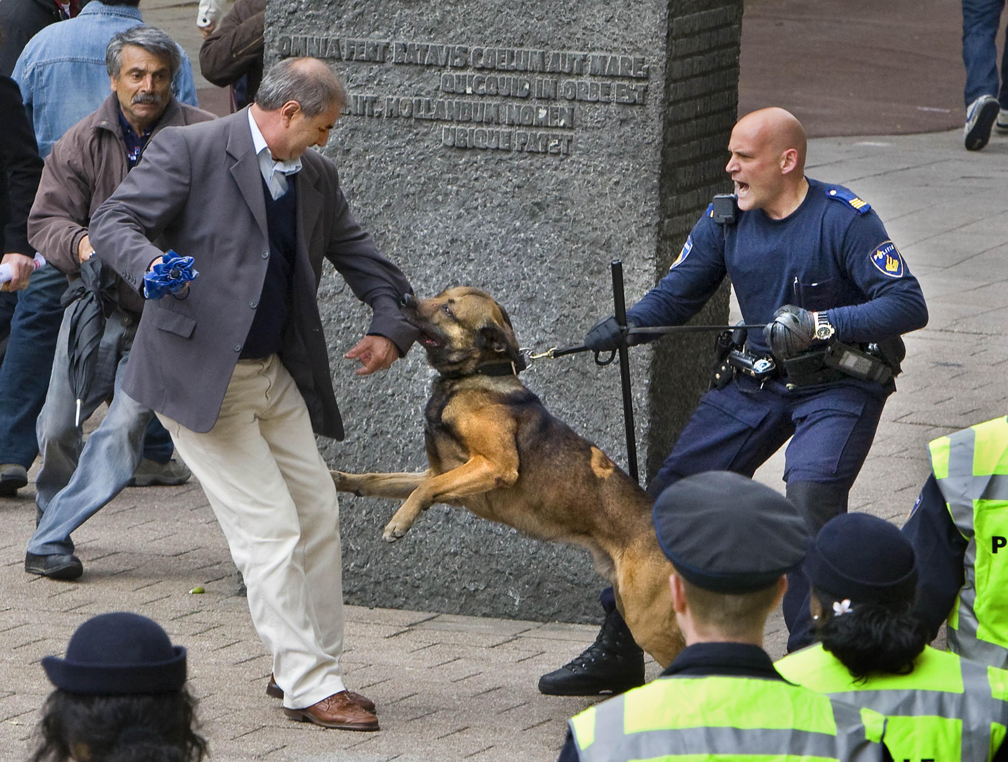 Stel dat een politiehond z'n tanden in je zet en niet wil loslaten... Ben je dan nog tegen het gebruik van de stroomhalsband?