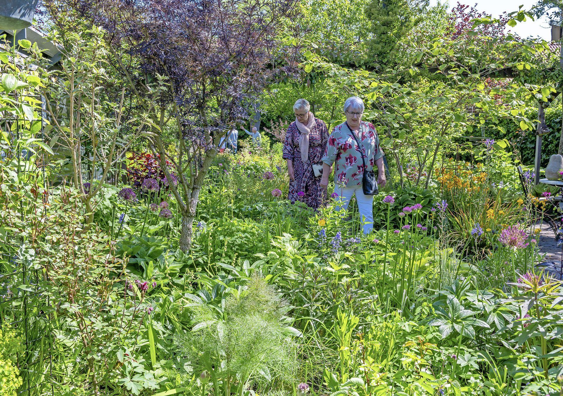 Eindelijk mooi weer, tijd voor een tuinroute door Waterland: 'Ik mag alleen de haag doen, de rest doet mijn vrouw'