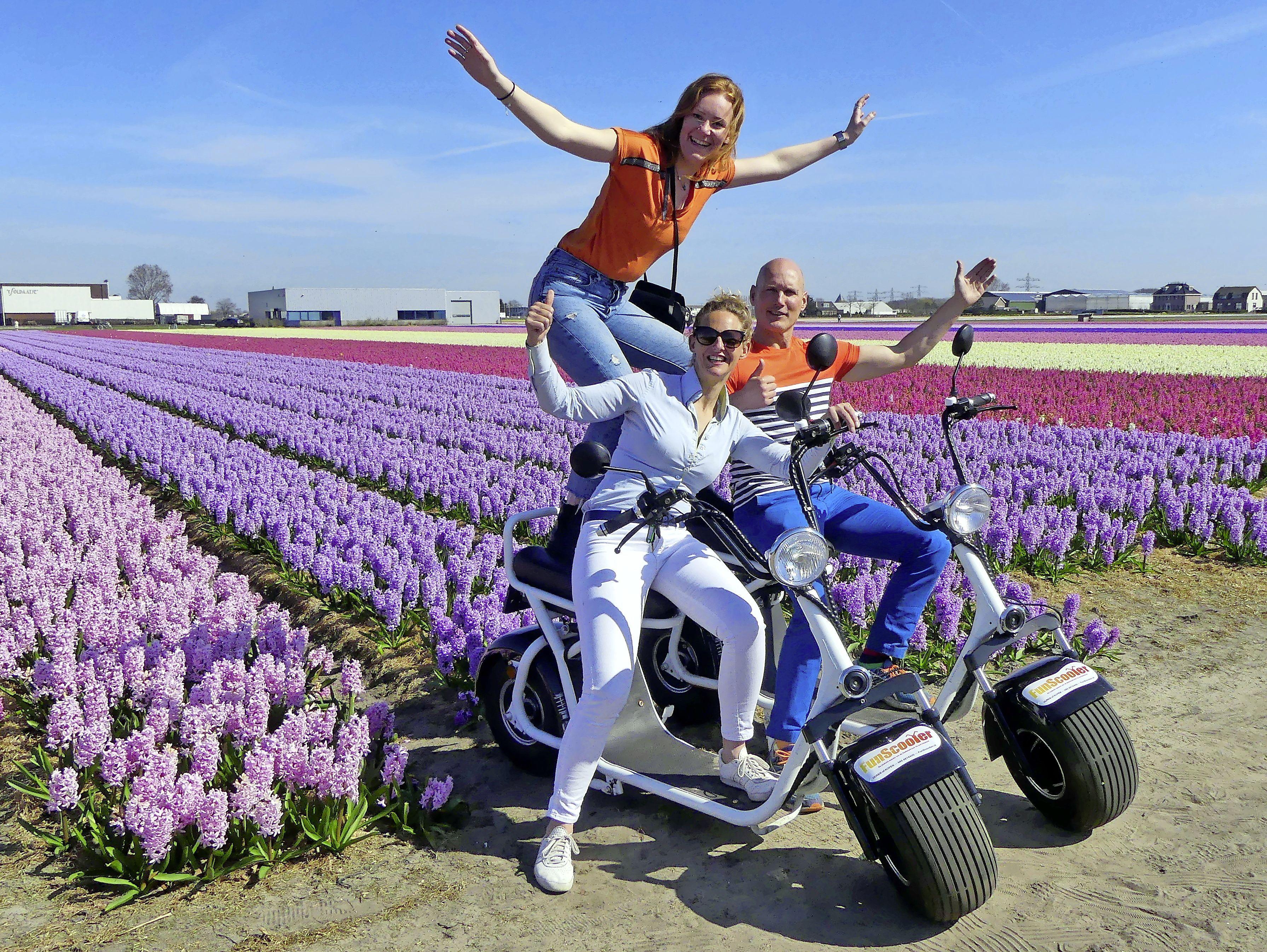 Volop digitale reclame voor bloeiende bollenvelden: 'Hopelijk houdt iedereen het gezellig'