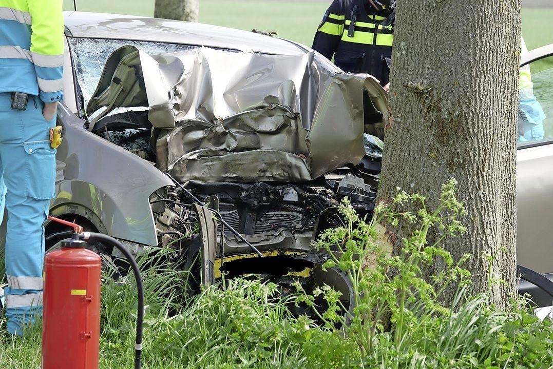 Automobilist (56) rijdt tegen boom en overlijdt bij eenzijdig ongeval in Zuidoostbeemster
