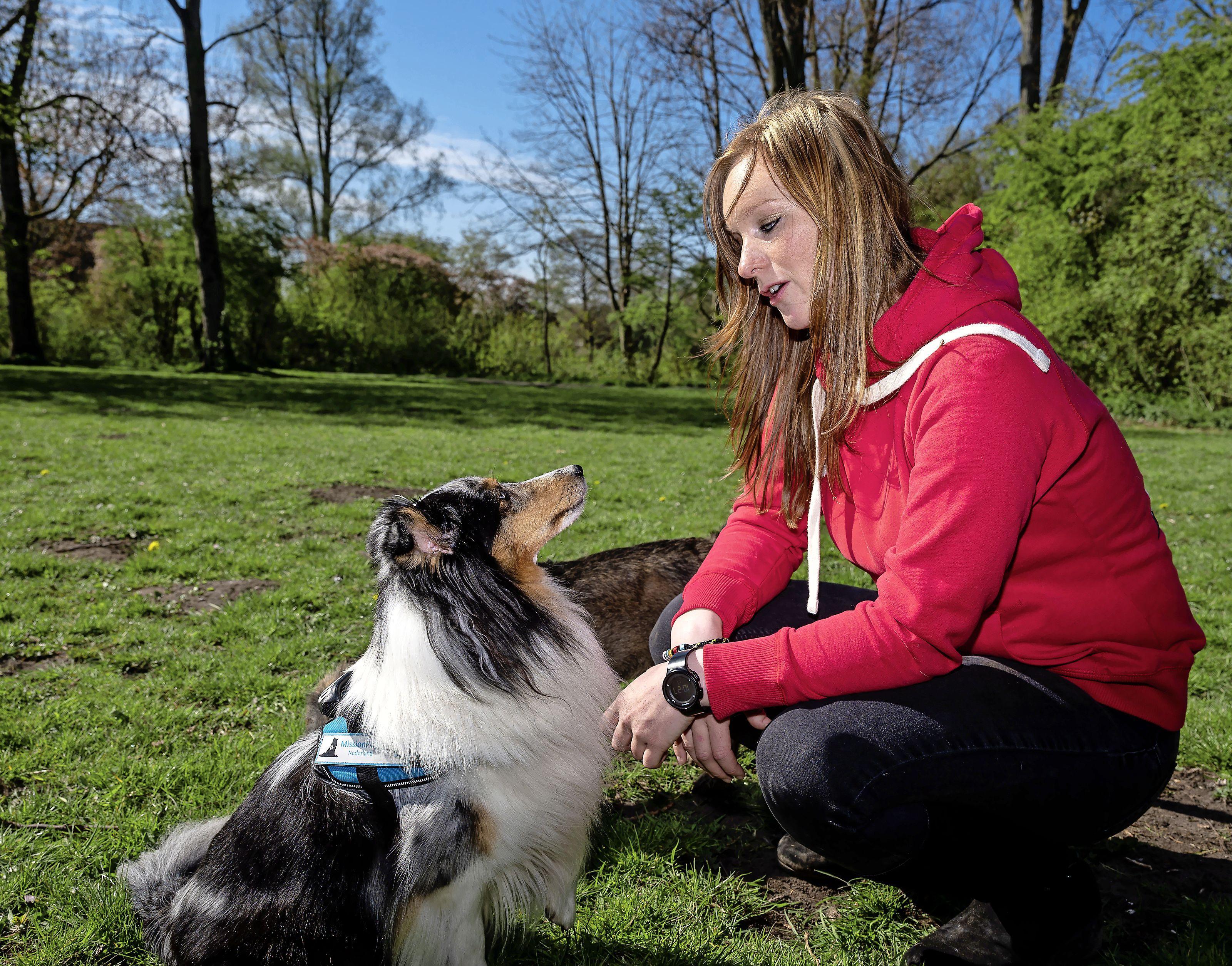 Hulphond Lica schiet baasje Deveny (25) te hulp bij paniekaanvallen, maar wordt nog te vaak geaaid tijdens het werk