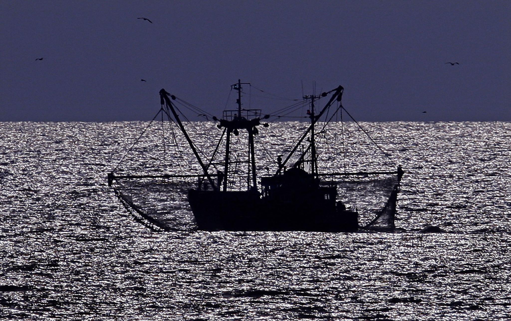 Visverwerkers willen meepraten over toekomst kottervisserij op Noordzee