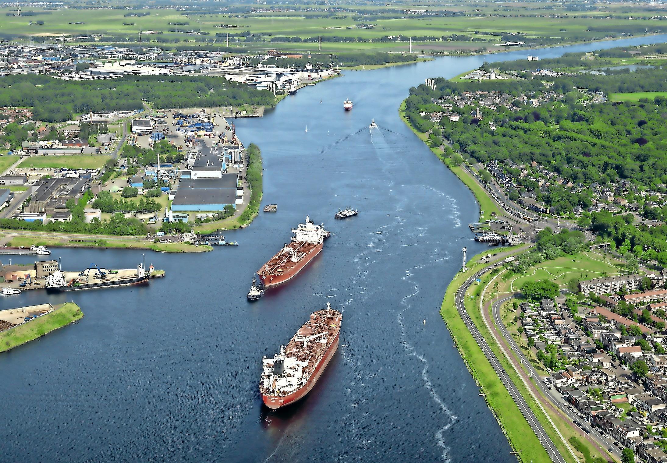'Dode harders in Noordzeekanaal waarschijnlijk gestorven door visziekte': Rijkswaterstaat ziet geen aanwijzingen voor lozing van giftige stoffen